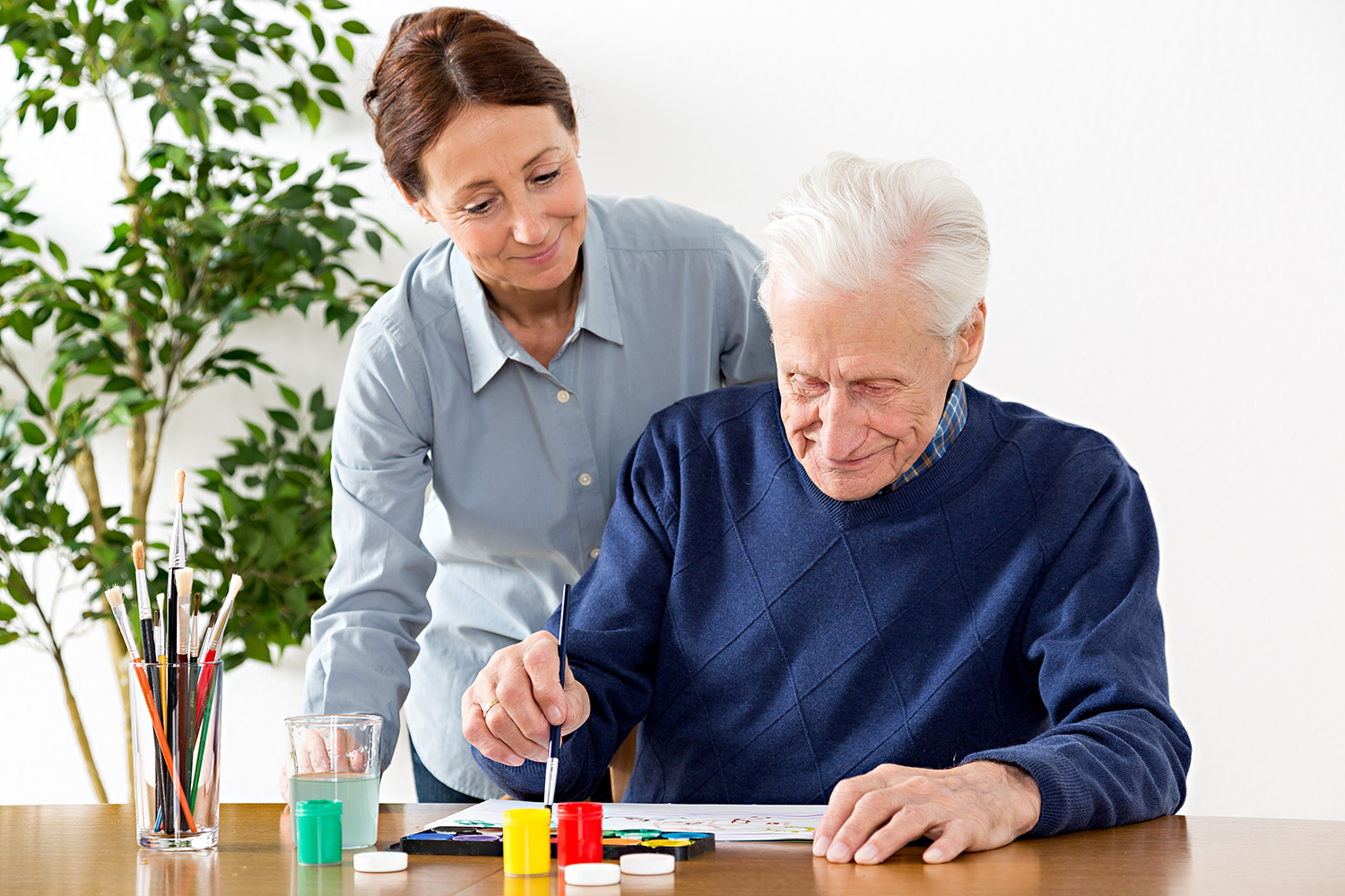 Nursing Programs In Ct >> Occupational Therapy - In-Home Care Westchester NY - In ...